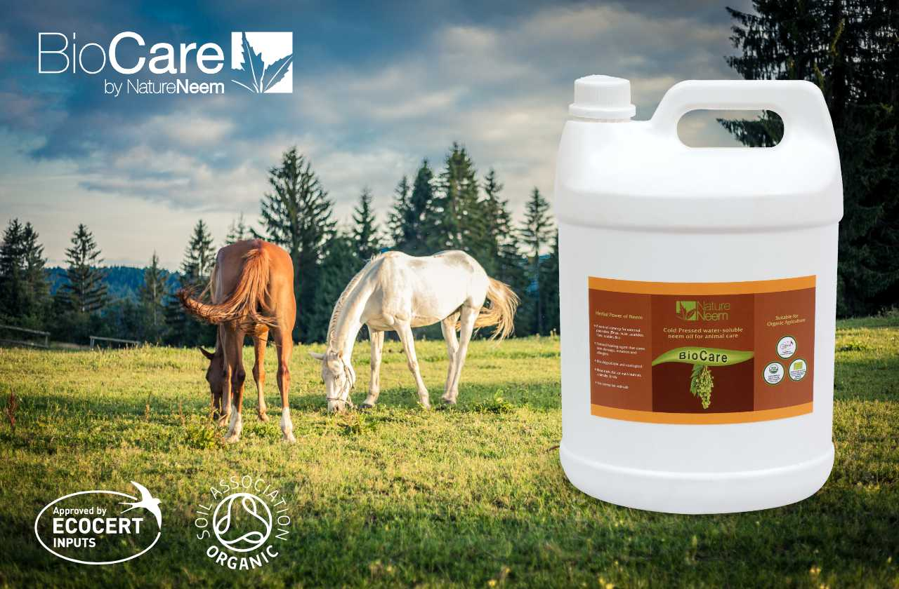 BioCare : Organic, natural and biodegradable