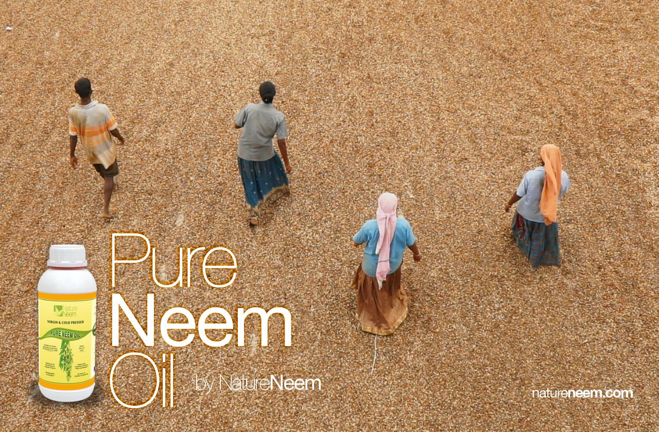 Nature Neem producers of bio products from South India